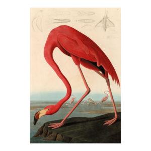 Schilderij Red Flamingo Aluart 120x180