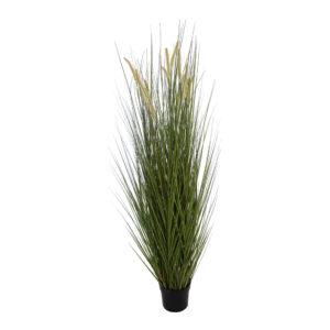Grass-183-cm-green-56010362